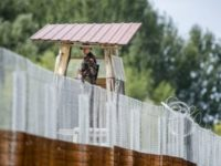 Hungary Demonstrates That Border Walls Are A Huge Success