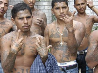 Top MS-13 Leader And 3,800 Suspected Gang Members Arrested Amidst Trump Administration Crackdown